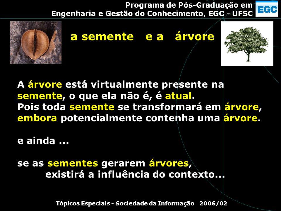 Programa de Pós-Graduação em Engenharia e Gestão do Conhecimento, EGC - UFSC Tópicos Especiais - Sociedade da Informação 2006/02 A árvore está virtual