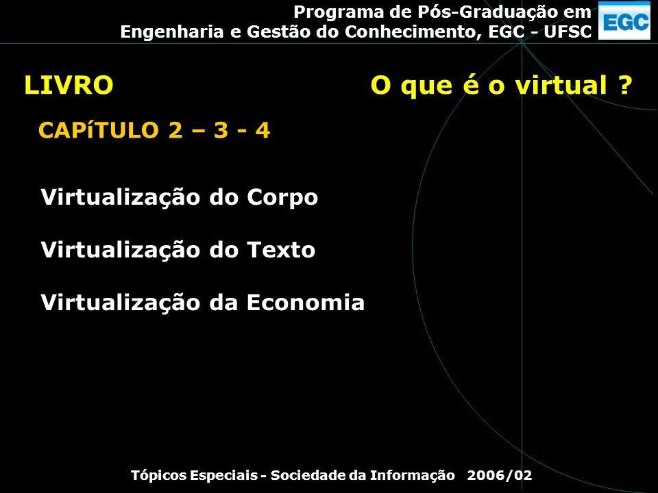 Programa de Pós-Graduação em Engenharia e Gestão do Conhecimento, EGC - UFSC Tópicos Especiais - Sociedade da Informação 2006/02 Virtualização do Corp