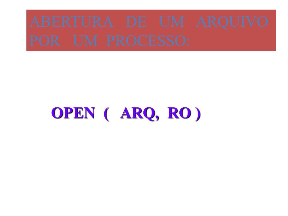 ABERTURA DE UM ARQUIVO POR UM PROCESSO: OPEN ( ARQ, RO )
