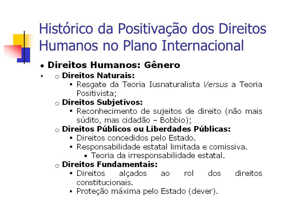 Histórico da Positivação dos Direitos Humanos no Plano Internacional.