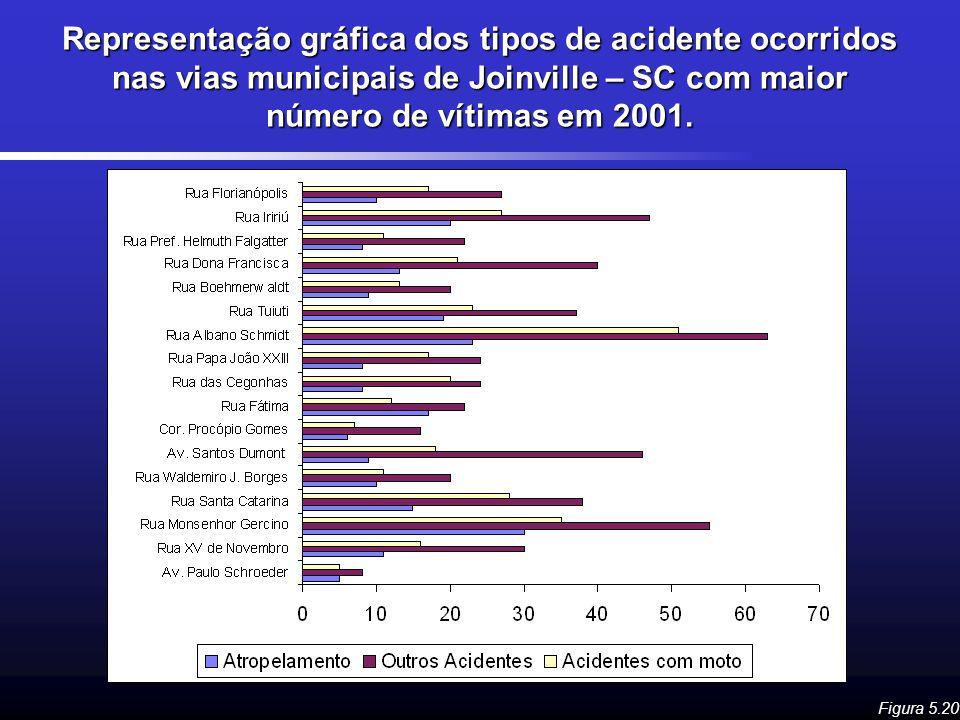 Representação gráfica dos tipos de acidente ocorridos nas vias municipais de Joinville – SC com maior número de vítimas em 2001. Figura 5.20