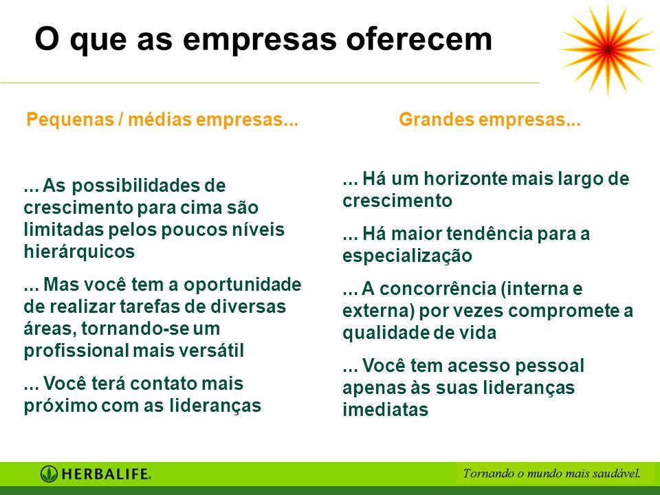 Pequenas / médias empresas...... As possibilidades de crescimento para cima são limitadas pelos poucos níveis hierárquicos... Mas você tem a oportunid