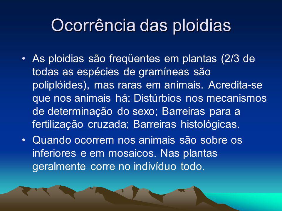 Ocorrência das ploidias As ploidias são freqüentes em plantas (2/3 de todas as espécies de gramíneas são poliplóides), mas raras em animais. Acredita-