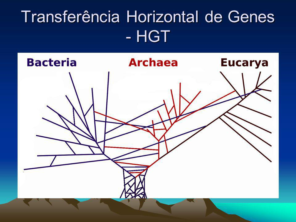 Transferência Horizontal de Genes - HGT