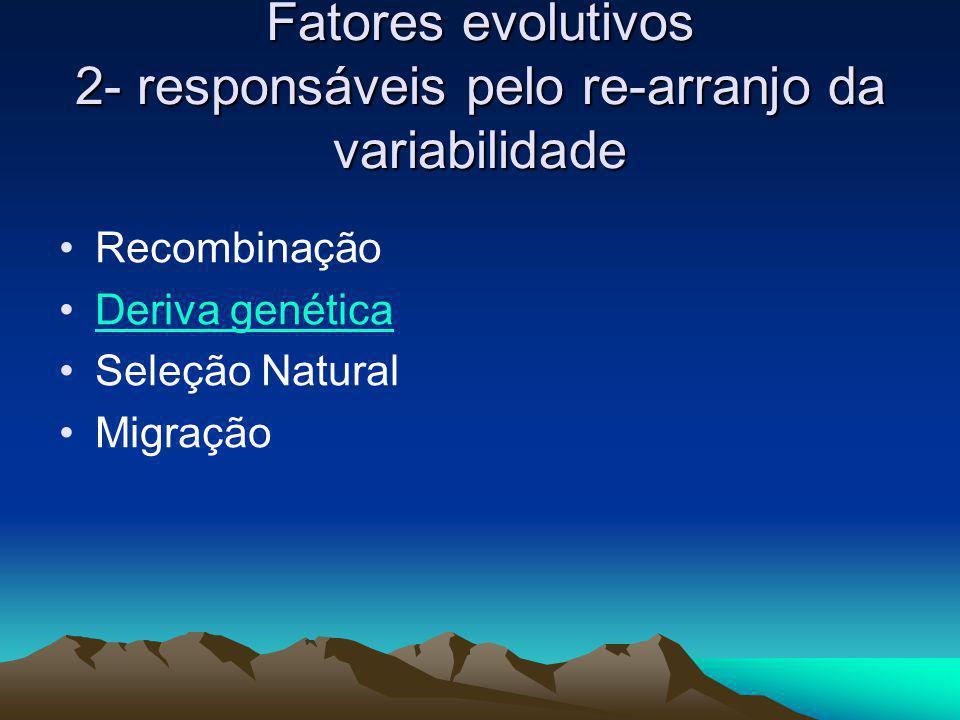 Fatores evolutivos 2- responsáveis pelo re-arranjo da variabilidade Recombinação Deriva genética Seleção Natural Migração