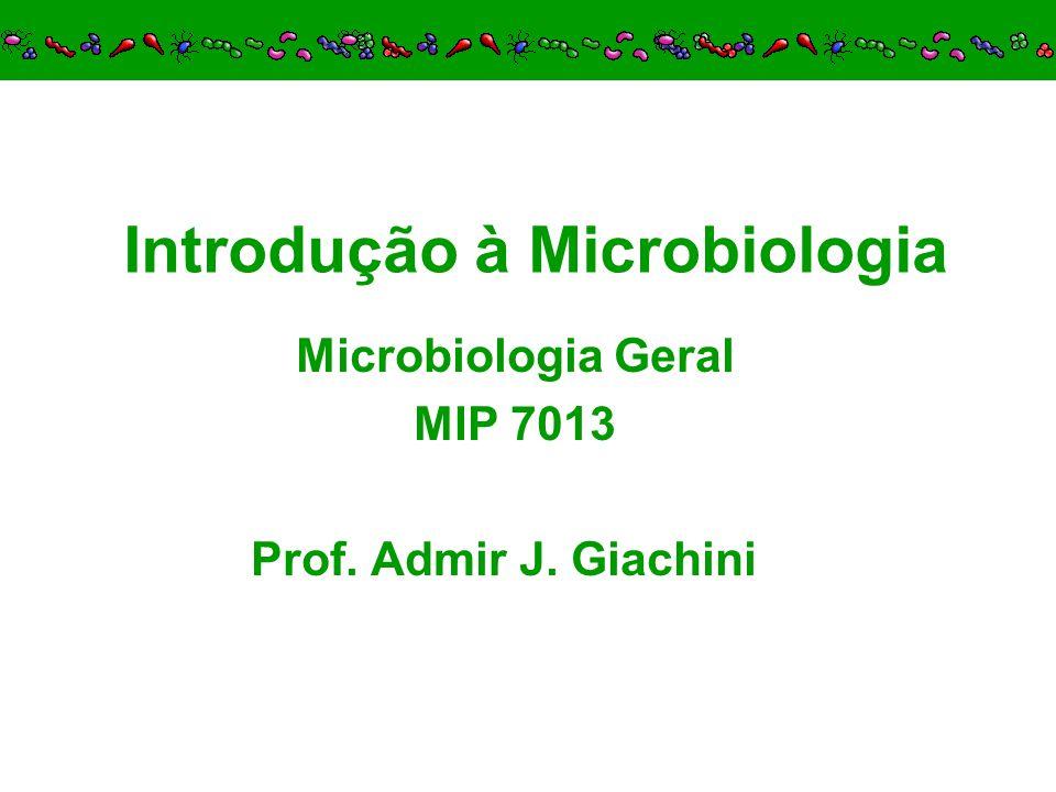 Ecologia Microbiana: –Sergei Winogradski e Martinus Beijerinck bactérias autotróficas fixação do N 2 bactérias bactérias fotossintetizantes 3.5.