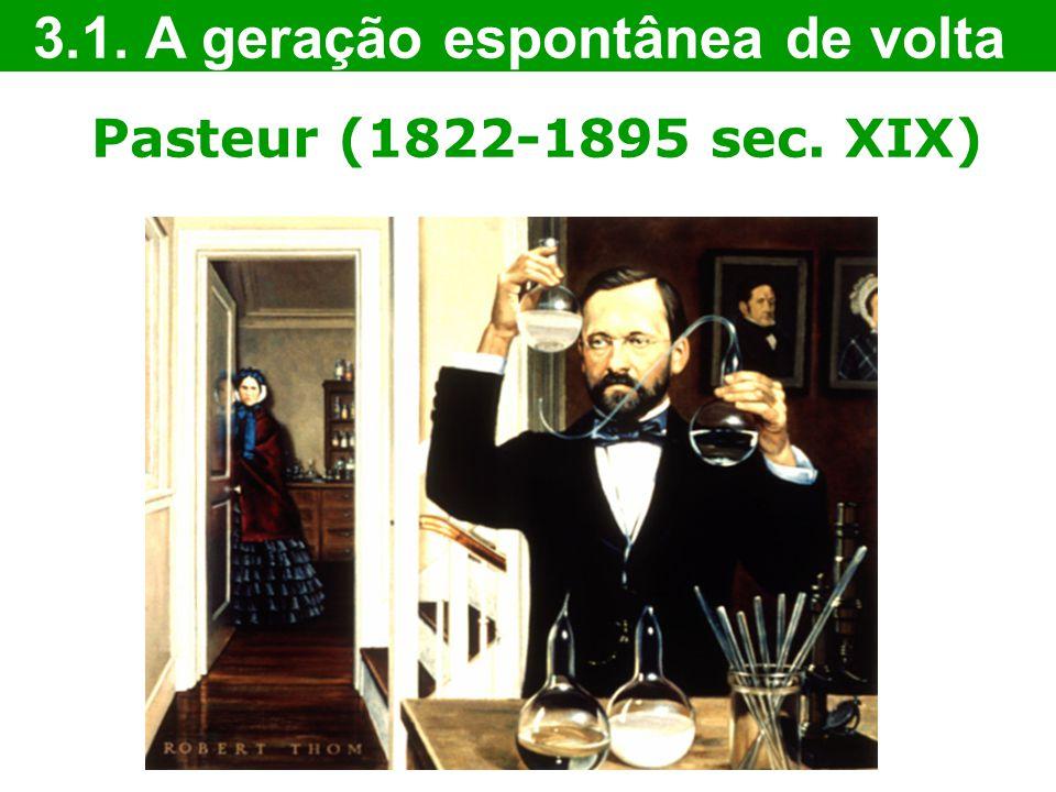 Pasteur (1822-1895 sec. XIX) 3.1. A geração espontânea de volta