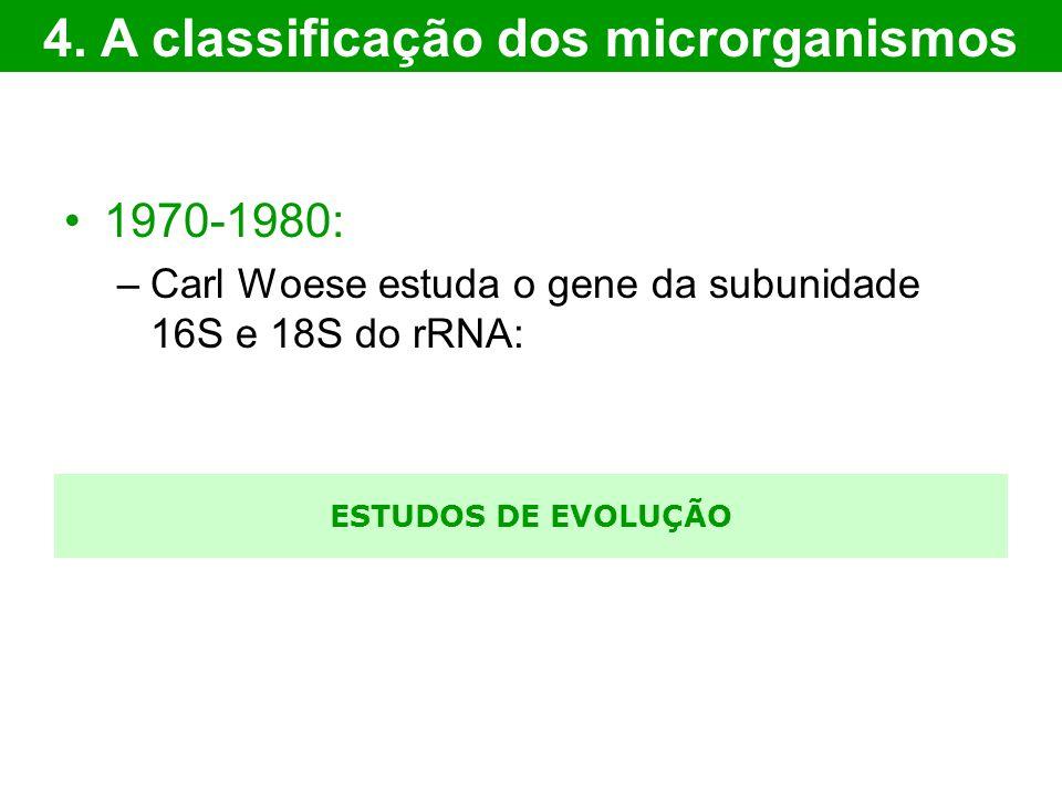 ESTUDOS DE EVOLUÇÃO 1970-1980: –Carl Woese estuda o gene da subunidade 16S e 18S do rRNA: 4. A classificação dos microrganismos