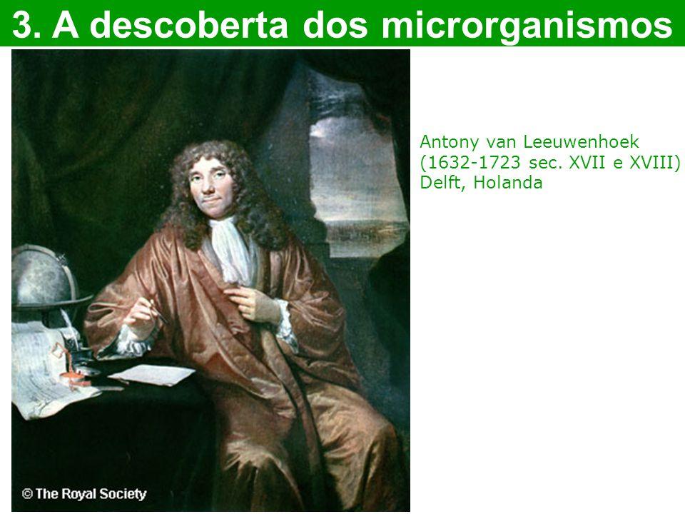 3. A descoberta dos microrganismos Antony van Leeuwenhoek (1632-1723 sec. XVII e XVIII) Delft, Holanda