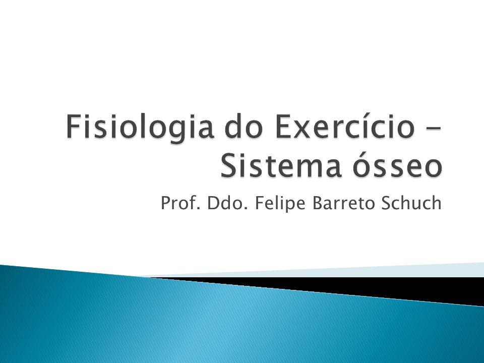 Prof. Ddo. Felipe Barreto Schuch