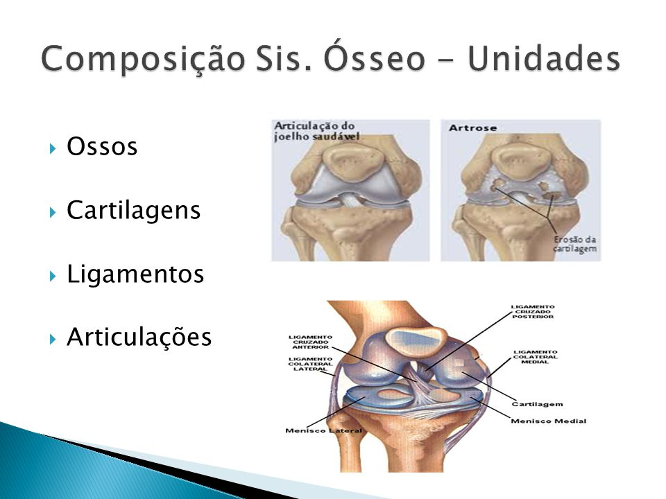 Inicia no útero Dois processos! Endocondral Intramembranosa