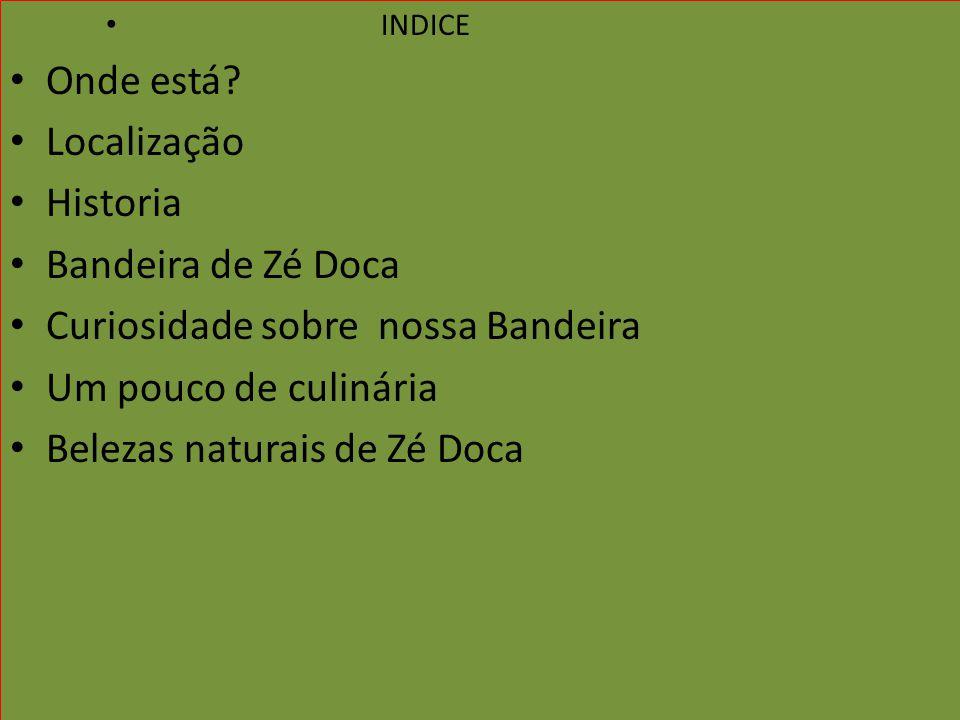 INDICE Onde está? Localização Historia Bandeira de Zé Doca Curiosidade sobre nossa Bandeira Um pouco de culinária Belezas naturais de Zé Doca