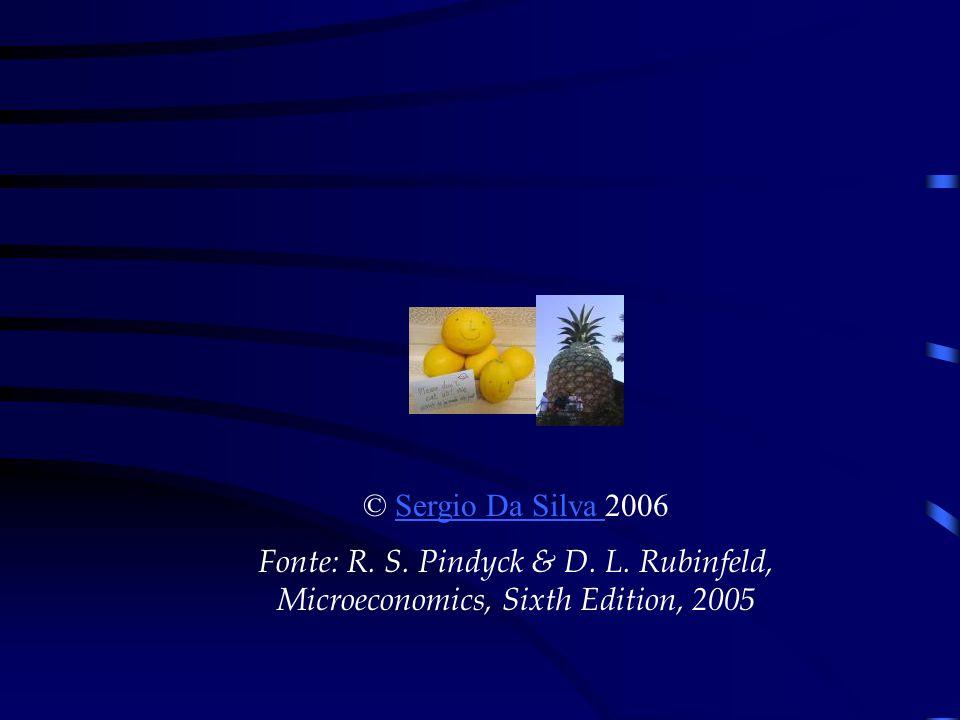 © Sergio Da Silva 2006Sergio Da Silva Fonte: R. S. Pindyck & D. L. Rubinfeld, Microeconomics, Sixth Edition, 2005