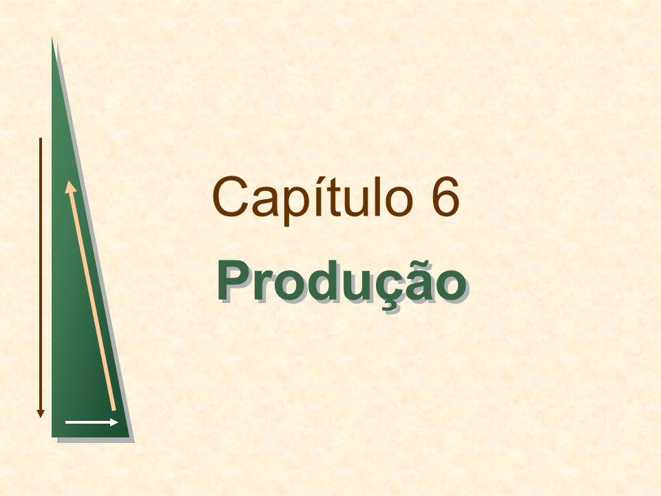 Capítulo 6Slide 52 Observações: 3)TMST e Produtividade Marginal A variação na produção resultante de uma variação na quantidade de capital é dada por : Produção com dois insumos variáveis