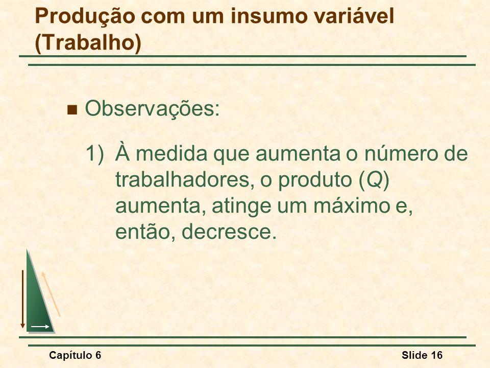 Capítulo 6Slide 16 Observações: 1) À medida que aumenta o número de trabalhadores, o produto (Q) aumenta, atinge um máximo e, então, decresce.