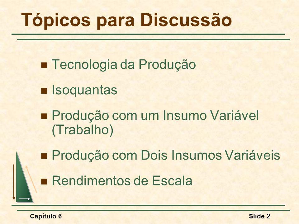 Capítulo 6Slide 33 Produtividade do Trabalho Produção com um insumo variável (Trabalho)
