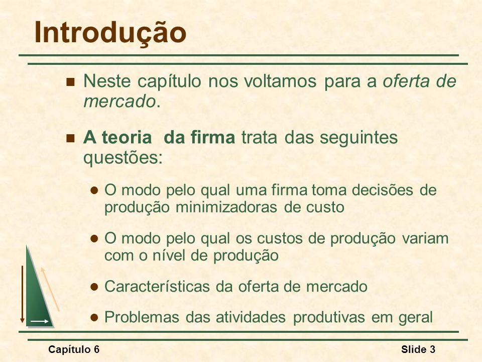 Capítulo 6Slide 4 Tecnologia da Produção O Processo Produtivo Combinação e transformação de insumos ou fatores de produção em produtos Tipos de Insumos (fatores de produção) Trabalho Matérias-primas Capital