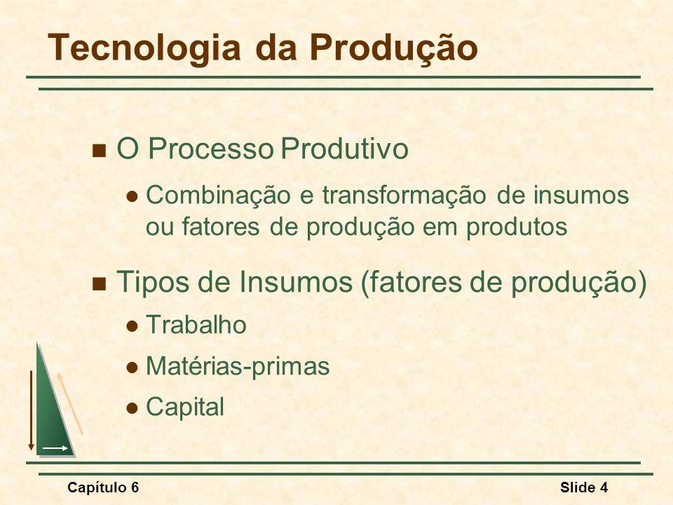 Capítulo 6Slide 5 Tecnologia da Produção Funçao de Produção: Indica o maior nível de produção que uma firma pode atingir para cada possível combinação de insumos, dado o estado da tecnologia.