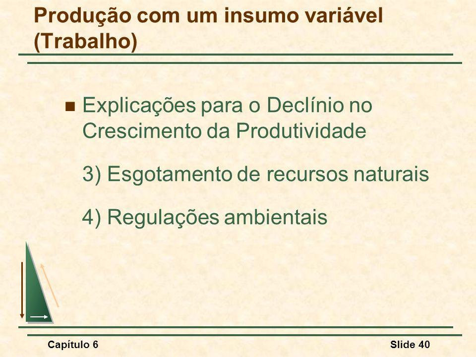 Capítulo 6Slide 40 Explicações para o Declínio no Crescimento da Produtividade 3) Esgotamento de recursos naturais 4) Regulações ambientais Produção com um insumo variável (Trabalho)