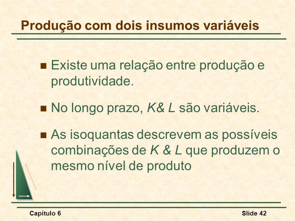 Capítulo 6Slide 42 Produção com dois insumos variáveis Existe uma relação entre produção e produtividade.