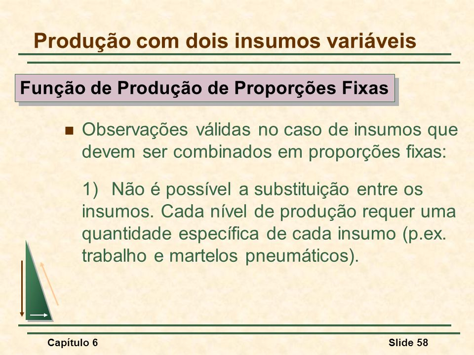 Capítulo 6Slide 58 Observações válidas no caso de insumos que devem ser combinados em proporções fixas: 1)Não é possível a substituição entre os insumos.