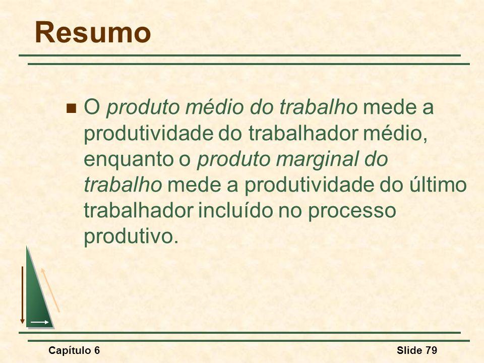 Capítulo 6Slide 79 Resumo O produto médio do trabalho mede a produtividade do trabalhador médio, enquanto o produto marginal do trabalho mede a produtividade do último trabalhador incluído no processo produtivo.