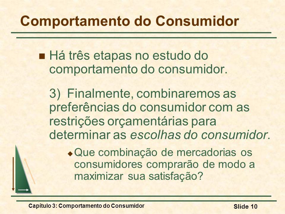 Capítulo 3: Comportamento do Consumidor Slide 10 Comportamento do Consumidor Há três etapas no estudo do comportamento do consumidor. 3) Finalmente, c