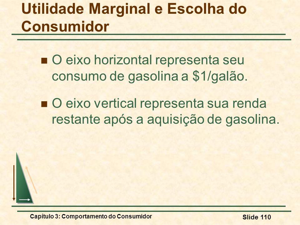 Capítulo 3: Comportamento do Consumidor Slide 110 O eixo horizontal representa seu consumo de gasolina a $1/galão. O eixo vertical representa sua rend