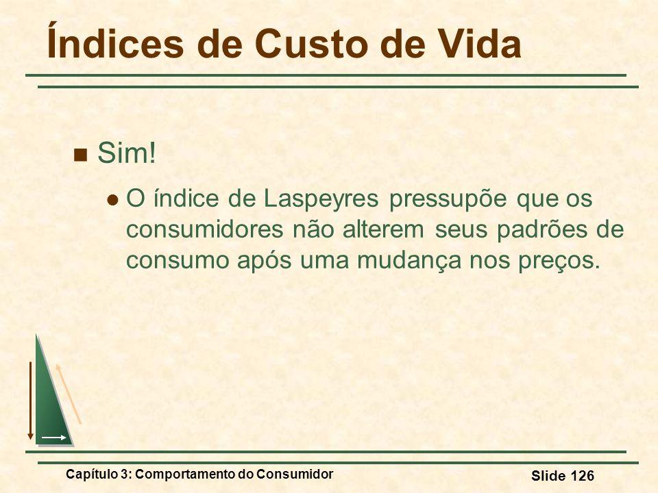 Capítulo 3: Comportamento do Consumidor Slide 126 Índices de Custo de Vida Sim! O índice de Laspeyres pressupõe que os consumidores não alterem seus p