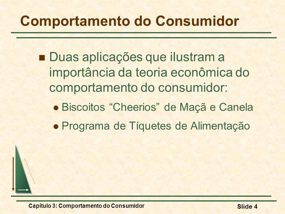 Capítulo 3: Comportamento do Consumidor Slide 4 Comportamento do Consumidor Duas aplicações que ilustram a importância da teoria econômica do comporta