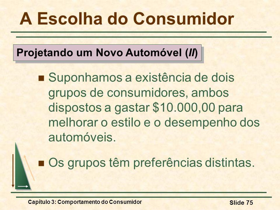 Capítulo 3: Comportamento do Consumidor Slide 75 A Escolha do Consumidor Suponhamos a existência de dois grupos de consumidores, ambos dispostos a gas