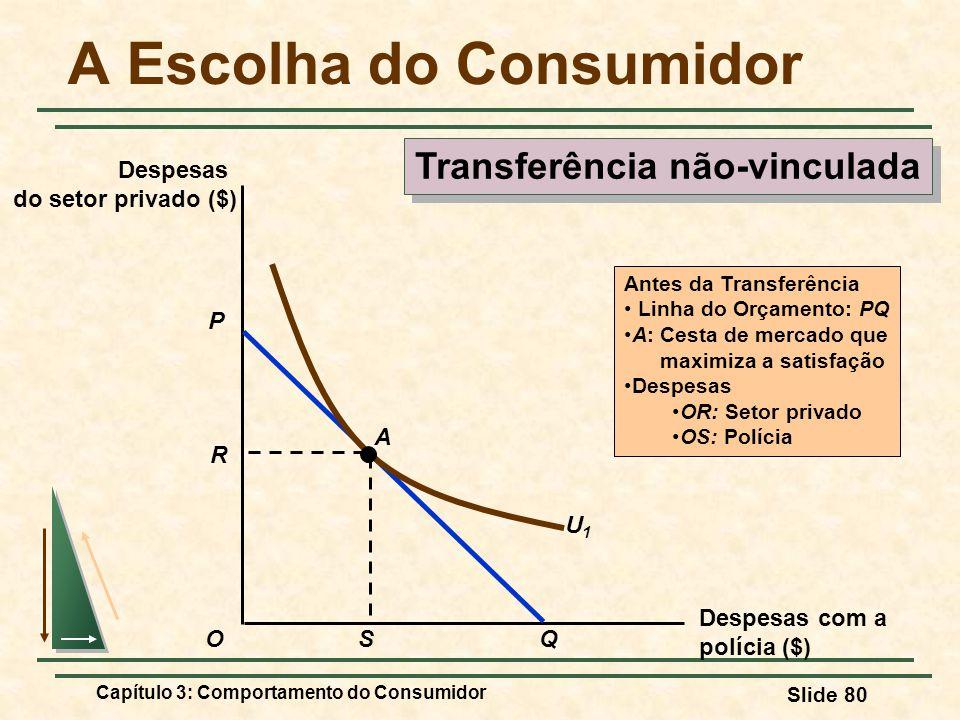 Capítulo 3: Comportamento do Consumidor Slide 80 A Escolha do Consumidor Transferência não-vinculada Despesas com a polícia ($) Despesas do setor priv