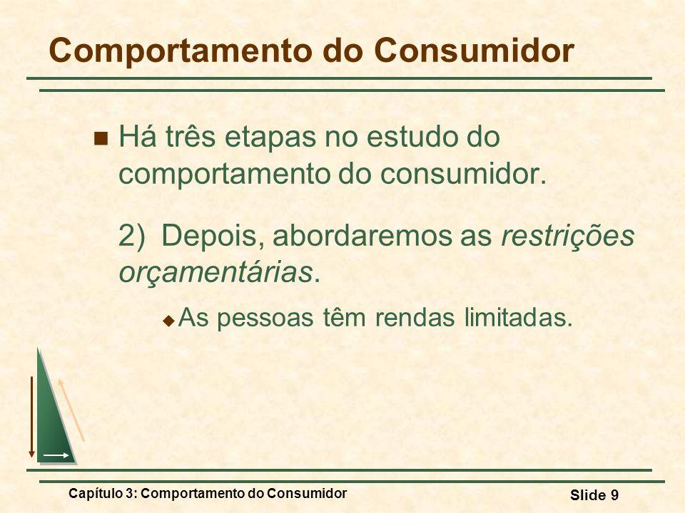 Capítulo 3: Comportamento do Consumidor Slide 9 Comportamento do Consumidor Há três etapas no estudo do comportamento do consumidor. 2)Depois, abordar