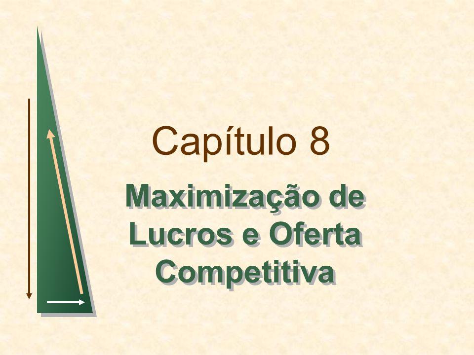 Capítulo 8 Maximização de Lucros e Oferta Competitiva