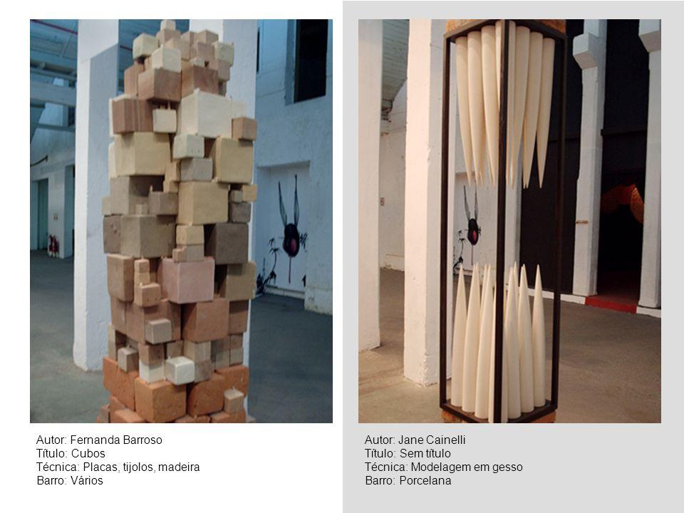 Autor: Fernanda Barroso Título: Cubos Técnica: Placas, tijolos, madeira Barro: Vários Autor: Jane Cainelli Título: Sem título Técnica: Modelagem em ge