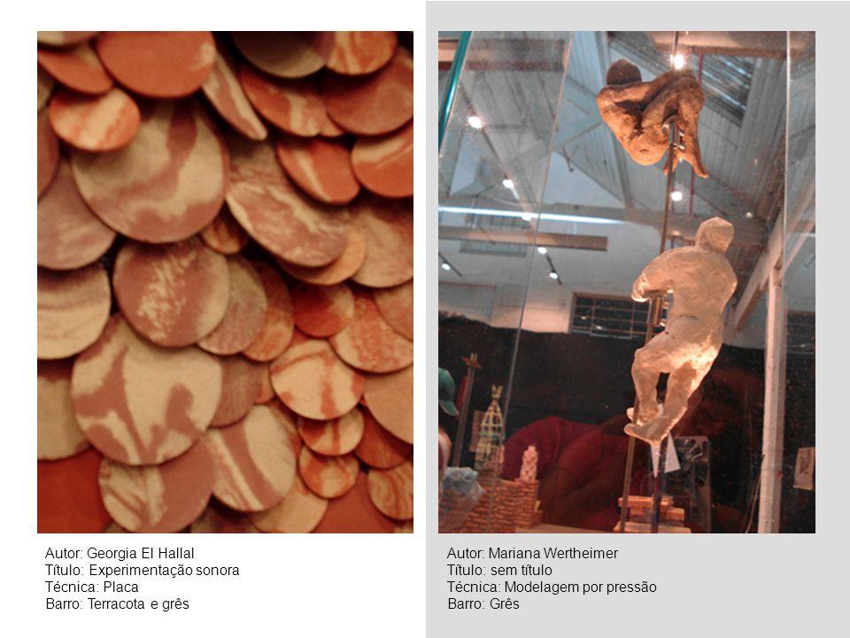 Autor: Georgia El Hallal Título: Experimentação sonora Técnica: Placa Barro: Terracota e grês Autor: Mariana Wertheimer Título: sem título Técnica: Mo