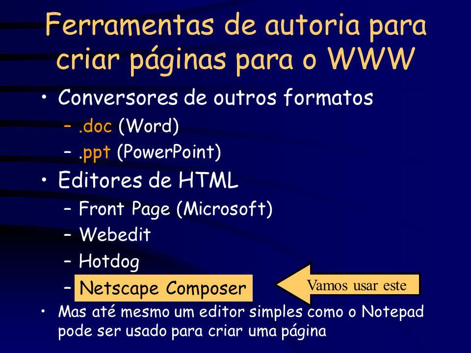 Ferramentas de autoria para criar páginas para o WWW Conversores de outros formatos –.doc (Word) –.ppt (PowerPoint) Editores de HTML –Front Page (Microsoft) –Webedit –Hotdog –Netscape Composer Mas até mesmo um editor simples como o Notepad pode ser usado para criar uma página Netscape Composer Vamos usar este