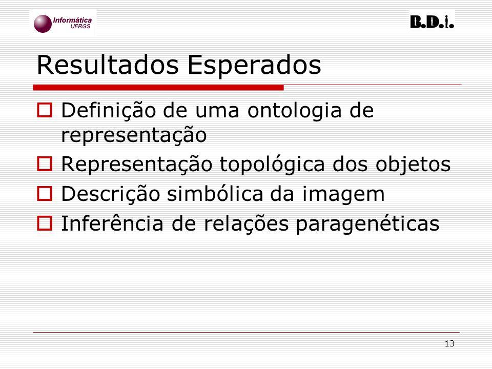 13 Resultados Esperados Definição de uma ontologia de representação Representação topológica dos objetos Descrição simbólica da imagem Inferência de r