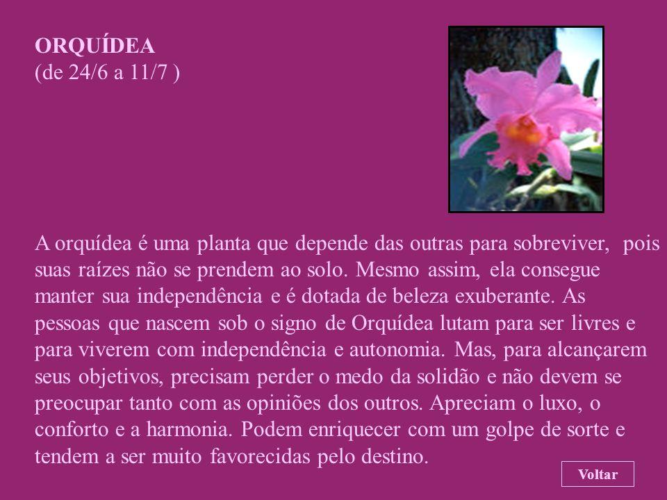 FLOR DE MARACUJÁ (de 1/6 a 23/6 ) Para os atlantes, essa flor é o símbolo da dualidade da natureza. As pessoas que nascem sob o signo de Flor-de-Marac