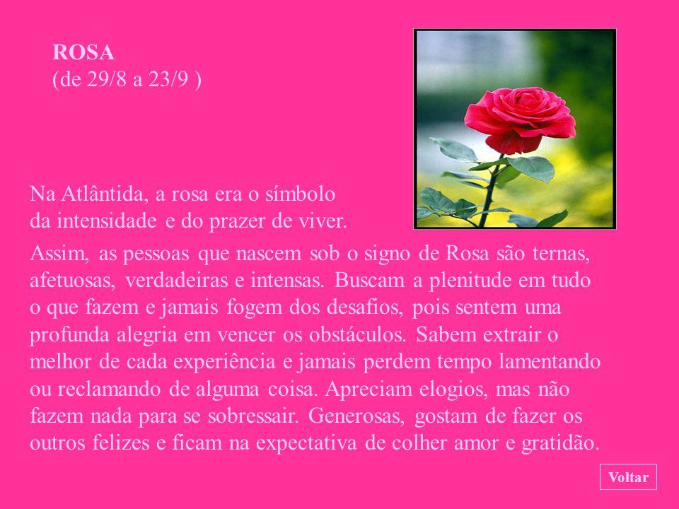 PAPOULA (de 6/8 a 28/8 ) Essa flor de cores brilhantes é a fonte do extrato usado para preparar o ópio. As pessoas nascidas sob o signo de Papoula gos
