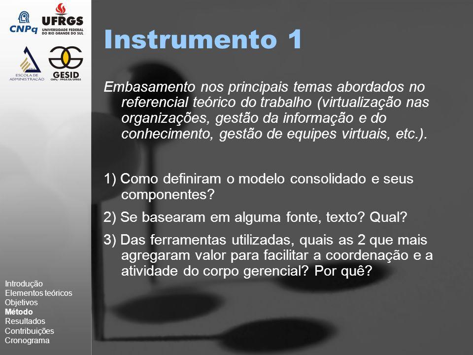 Instrumento 1 Embasamento nos principais temas abordados no referencial teórico do trabalho (virtualização nas organizações, gestão da informação e do conhecimento, gestão de equipes virtuais, etc.).