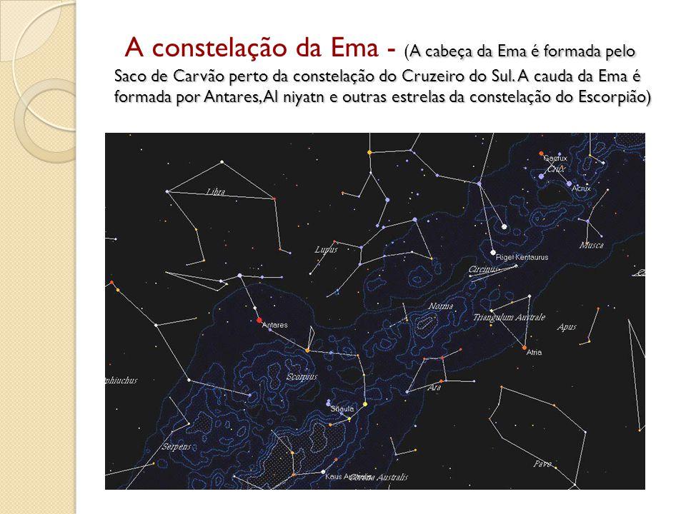A cabeça da Ema é formada pelo Saco de Carvão perto da constelação do Cruzeiro do Sul. A cauda da Ema é formada por Antares, Al niyatn e outras estrel