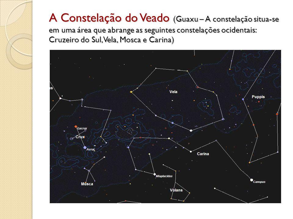 A Constelação do Veado (Guaxu – A constelação situa-se em uma área que abrange as seguintes constelações ocidentais: Cruzeiro do Sul, Vela, Mosca e Ca