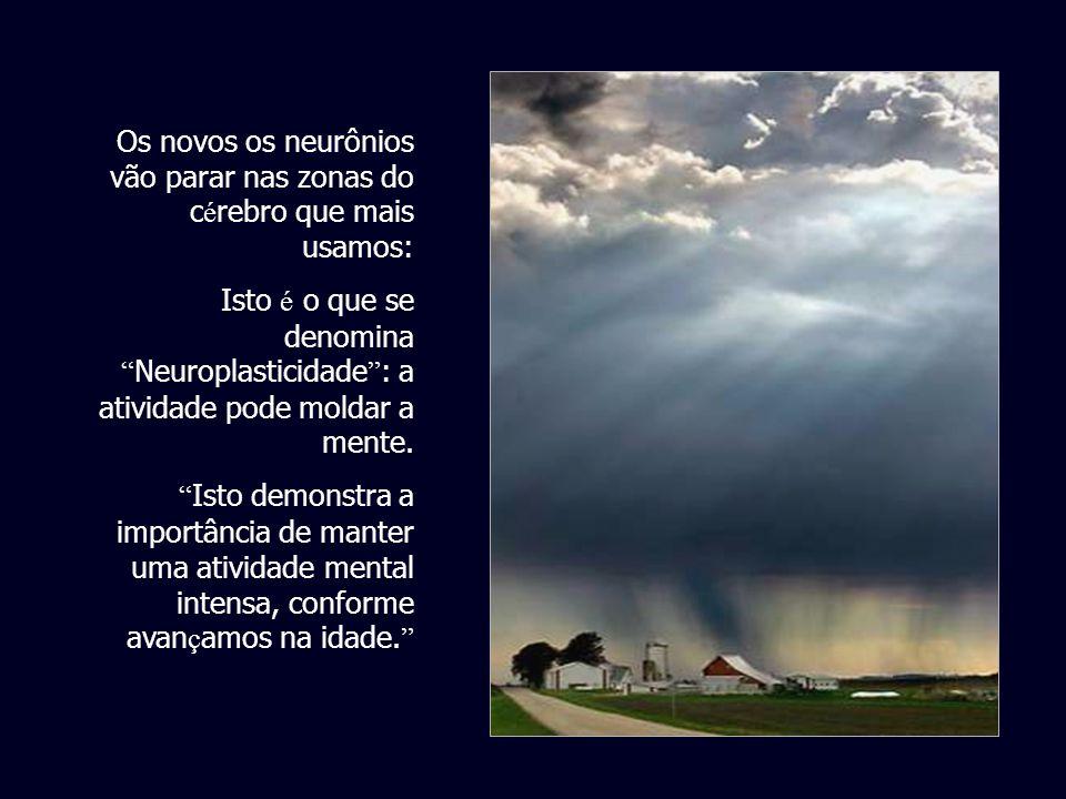 Os seres humanos podem criar novos neurônios ao longo de toda a vida. O esforço para criar novos neurônios pode incrementar-se mediante o esforço ment