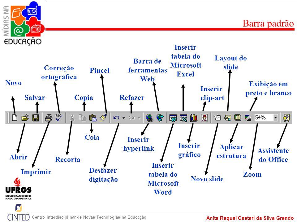 Anita Raquel Cestari da Silva Grando Centro Interdisciplinar de Novas Tecnologias na Educação Modo de slides Modo de estrutura de tópicos Modo de classificação de slides Modo de anotação Apresentação de slides Barra de visualização de Slides