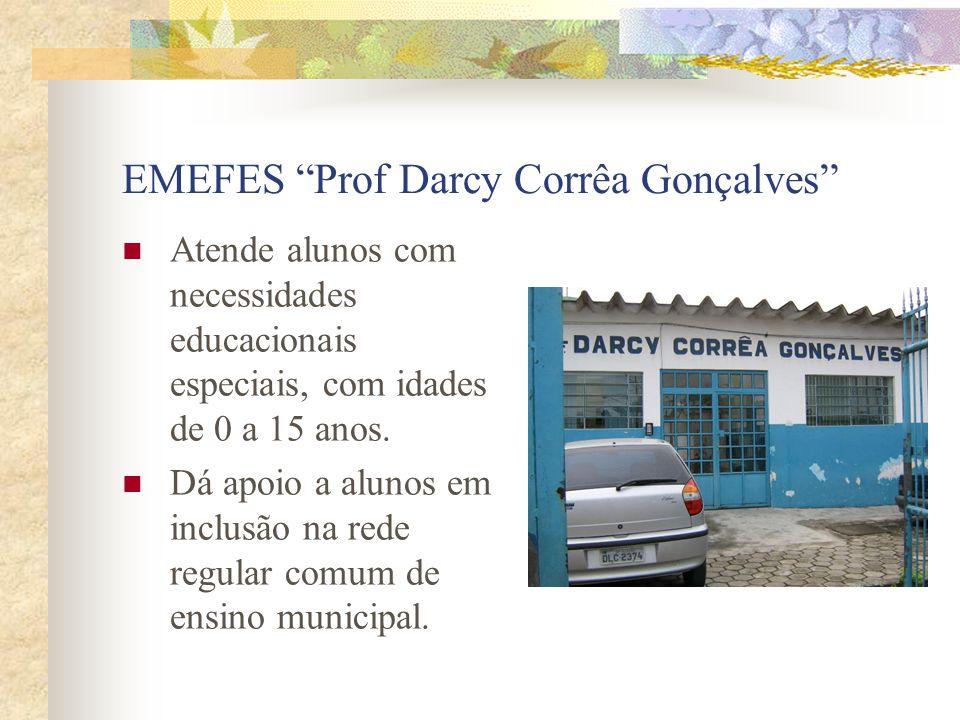 EMEFES Prof Darcy Corrêa Gonçalves Atende alunos com necessidades educacionais especiais, com idades de 0 a 15 anos. Dá apoio a alunos em inclusão na