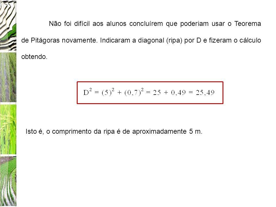 Não foi difícil aos alunos concluírem que poderiam usar o Teorema de Pitágoras novamente. Indicaram a diagonal (ripa) por D e fizeram o cálculo obtend
