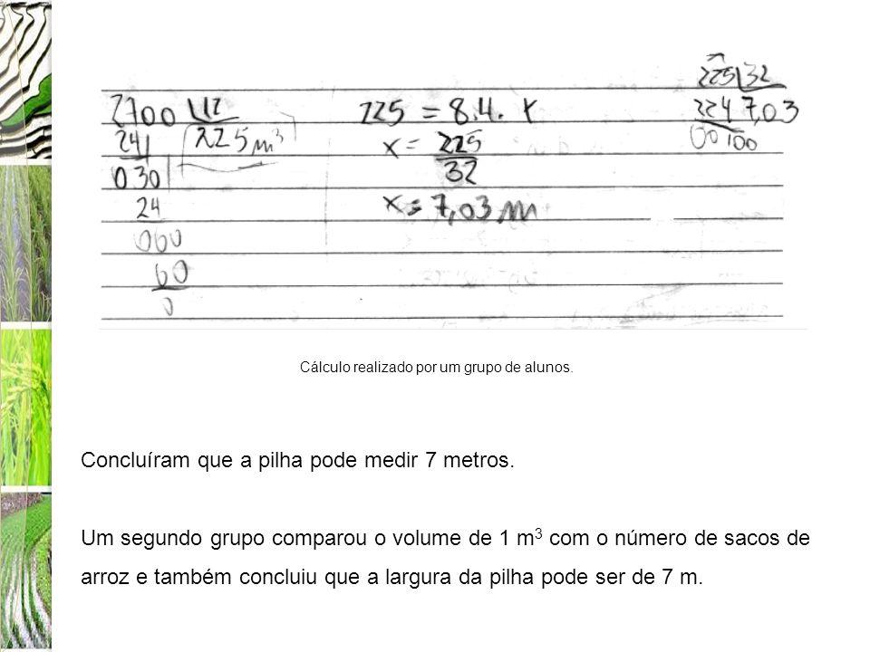 Concluíram que a pilha pode medir 7 metros. Um segundo grupo comparou o volume de 1 m 3 com o número de sacos de arroz e também concluiu que a largura