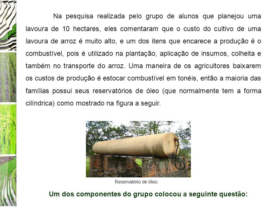Na pesquisa realizada pelo grupo de alunos que planejou uma lavoura de 10 hectares, eles comentaram que o custo do cultivo de uma lavoura de arroz é m