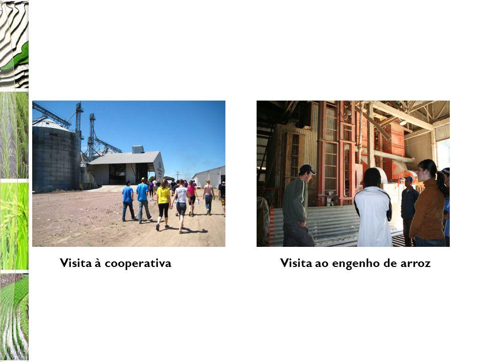 Para saber quanto material seria necessário para construir o reservatório, os alunos reportaram-se à situação já trabalhada referente à construção do reboque para o transporte do arroz.